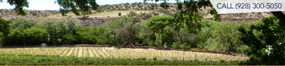 Cornville and Page Springs Arizona real estate properties in the green belt - Oak Creek with view of vineyards